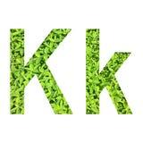"""Αγγλικό αλφάβητο """"K k† που γίνεται από την πράσινη χλόη στο άσπρο υπόβαθρο για απομονωμένος Στοκ Εικόνες"""