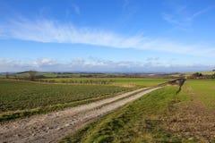 Αγγλικό γεωργικό vista Στοκ Φωτογραφία