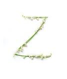 Αγγλικό γράμμα Ζ στο αλφάβητο των κουδουνιών λουλουδιών Εγγραφή καλλιγραφίας στοκ φωτογραφία με δικαίωμα ελεύθερης χρήσης