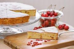 Αγγλικό κέικ με τους ξηρούς καρπούς Στοκ Εικόνα