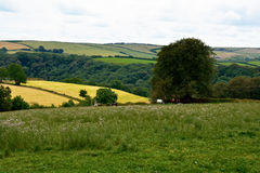 Αγγλικό τοπίο επαρχίας στοκ εικόνες