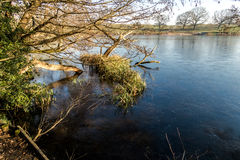 Αγγλικό φυσικό τοπίο το πρωί σε Felbrigg, Norfolk Στοκ Φωτογραφία