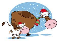 Αγελάδες Χριστουγέννων διανυσματική απεικόνιση