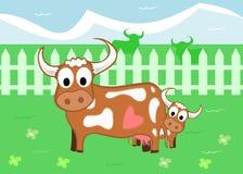 αγελάδες απεικόνιση αποθεμάτων
