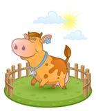 αγελάδα αστεία Στοκ φωτογραφίες με δικαίωμα ελεύθερης χρήσης