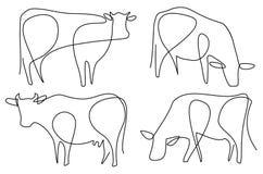 Αγελάδα ένα σχέδιο γραμμών ελεύθερη απεικόνιση δικαιώματος