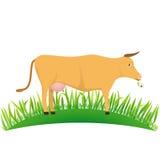 Αγελάδα απεικόνισης στο χορτοτάπητα διανυσματική απεικόνιση
