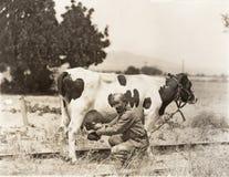 Αγελάδα αρμέγματος ατόμων στον τομέα στοκ φωτογραφία με δικαίωμα ελεύθερης χρήσης