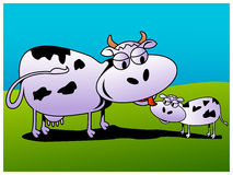 Αγελάδα και μόσχος Στοκ Εικόνες