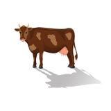 Αγελάδα που απομονώνεται σε ένα άσπρο υπόβαθρο Διανυσματικό επίπεδο ilustration Στοκ εικόνες με δικαίωμα ελεύθερης χρήσης