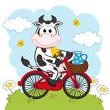 Αγελάδα που οδηγά ένα ποδήλατο με το γάλα ελεύθερη απεικόνιση δικαιώματος