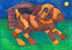 αγελάδα ταύρων ζώων εσωτερική σκυλί με έναν θάλαμο Στοκ Εικόνες
