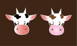 αγελάδα δύο Στοκ Φωτογραφίες