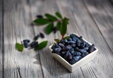 αγιόκλημα Ένα εύγευστο μούρο τρόφιμα υγιή Στοκ εικόνες με δικαίωμα ελεύθερης χρήσης