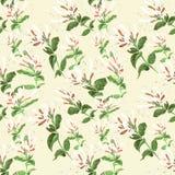 Αγιόκλημα κλάδων πρότυπο άνευ ραφής Κολάζ των λουλουδιών και των φύλλων watercolor Στοκ Φωτογραφίες