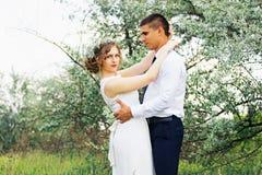 Αγκάλιασμα του όμορφου νέου ζεύγους γάμος Στοκ φωτογραφία με δικαίωμα ελεύθερης χρήσης