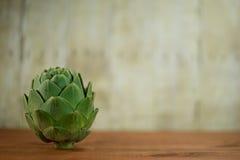 Αγκινάρα στο ξύλο Στοκ Εικόνες