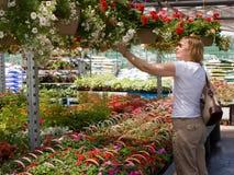 αγοράζοντας λουλούδια στοκ εικόνες