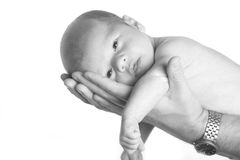αγοράκι νεογέννητο Στοκ Φωτογραφίες