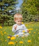 Αγοράκι που εξετάζει τα κίτρινα λουλούδια Στοκ φωτογραφία με δικαίωμα ελεύθερης χρήσης