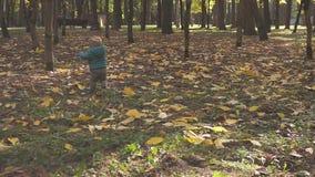 Αγοράκι που λαμβάνει τα πρώτες μέτρα και την πτώση του στο πάρκο Ημέρα φθινοπώρου φιλμ μικρού μήκους
