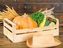 Αγοράστε τα φρέσκα homegrown λαχανικά Έννοια καταστημάτων παντοπωλείων Ακριβώς από τον κήπο Φρέσκα λαχανικά υπηρεσιών παράδοσης α στοκ φωτογραφίες με δικαίωμα ελεύθερης χρήσης