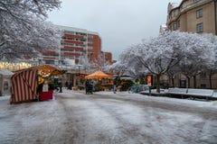 Αγορά έξω από τη λεωφόρο Fältöversten αγορών μια χιονώδη ημέρα στοκ εικόνα