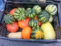 Αγορά αγροτών κολοκύνθης Στοκ Φωτογραφία
