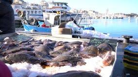 Αγορά αλιείας με τα ζωντανά φρέσκα ψάρια της Μεσογείου τηλεοπτικό 4K απόθεμα βίντεο