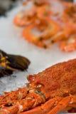 αγορά αστακών ψαριών παρο&upsilo Στοκ Εικόνες