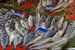 Αγορά Ιστανμπούλ ψαριών Στοκ Φωτογραφίες