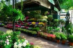 Αγορά λουλουδιών του Παρισιού στοκ εικόνα