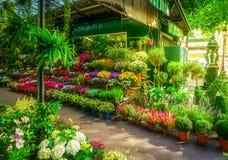 Αγορά λουλουδιών του Παρισιού στοκ φωτογραφίες με δικαίωμα ελεύθερης χρήσης