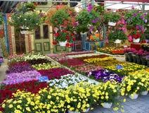 αγορά λουλουδιών Στοκ φωτογραφία με δικαίωμα ελεύθερης χρήσης