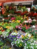 Αγορά λουλουδιών στη Νίκαια Στοκ Εικόνες