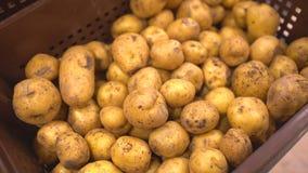 Αγορά πατατών Οι πατάτες κλείνουν επάνω στο πρώτο πλάνο φιλμ μικρού μήκους