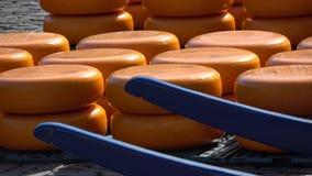 Αγορά τυριών στο Αλκμάαρ, Κάτω Χώρες απόθεμα βίντεο