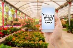 Αγορά των λουλουδιών με το smartphone μου Στοκ Φωτογραφίες