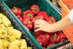 Αγορά φρούτων με τα διάφορα ζωηρόχρωμα φρέσκα φρούτα και λαχανικά φρέσκια ελιά πετρελαίου κουζινών τροφίμων έννοιας αρχιμαγείρων  Στοκ Εικόνες