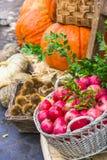 Αγορά φρούτων με το κάστανο, τις κολοκύθες και το γρανάτη Στοκ εικόνες με δικαίωμα ελεύθερης χρήσης
