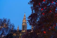 Αγορά Χριστουγέννων στη Βιέννη στοκ εικόνες