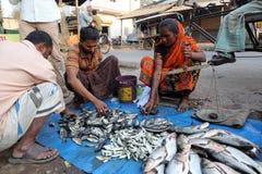 Αγορά ψαριών σε Kumrokhali, δυτική Βεγγάλη, Ινδία Στοκ Φωτογραφία