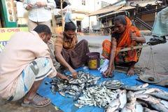 Αγορά ψαριών σε Kumrokhali, δυτική Βεγγάλη, Ινδία Στοκ Εικόνες