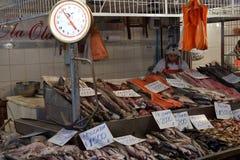 Αγορά ψαριών του Σαντιάγο Στοκ φωτογραφίες με δικαίωμα ελεύθερης χρήσης