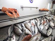 αγορά ψαριών Στοκ Φωτογραφίες