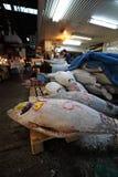 Αγορά ψαριών Tsukiji Στοκ Εικόνα