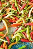 αγορά chilis ποικίλη Στοκ εικόνες με δικαίωμα ελεύθερης χρήσης