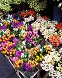 Αγορά Kalenic Στοκ Εικόνα