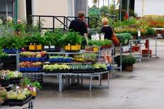 αγορές λουλουδιών Στοκ Φωτογραφίες