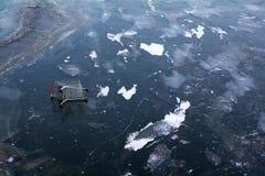 αγορές πάγου κάρρων Στοκ Εικόνες